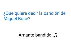 Significado de la canción Miguel Bosé Amante Bandido.