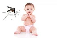 Ảnh hưởng của muỗi đốt với trẻ nhỏ