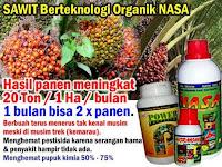 HARGA PUPUK SAWIT NASA TERBARU SELURUH INDONESIA