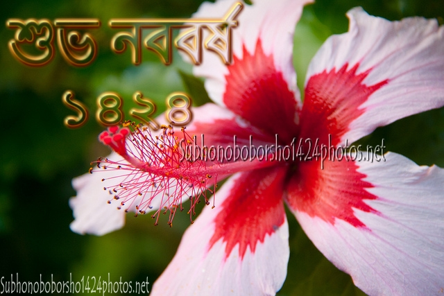 Pohela Boishakh 1424 Pics Greetings