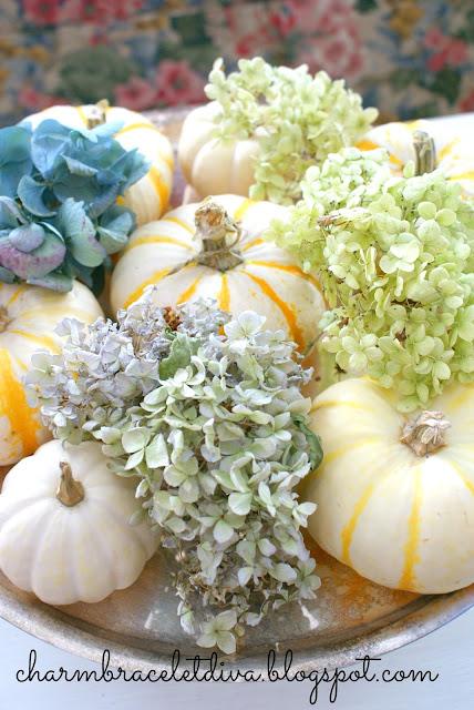 dried blue hydrangea white pumpkins