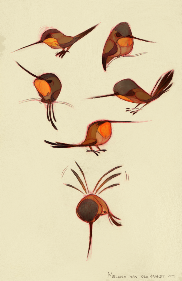 Rufous hummingbird drawing - photo#32