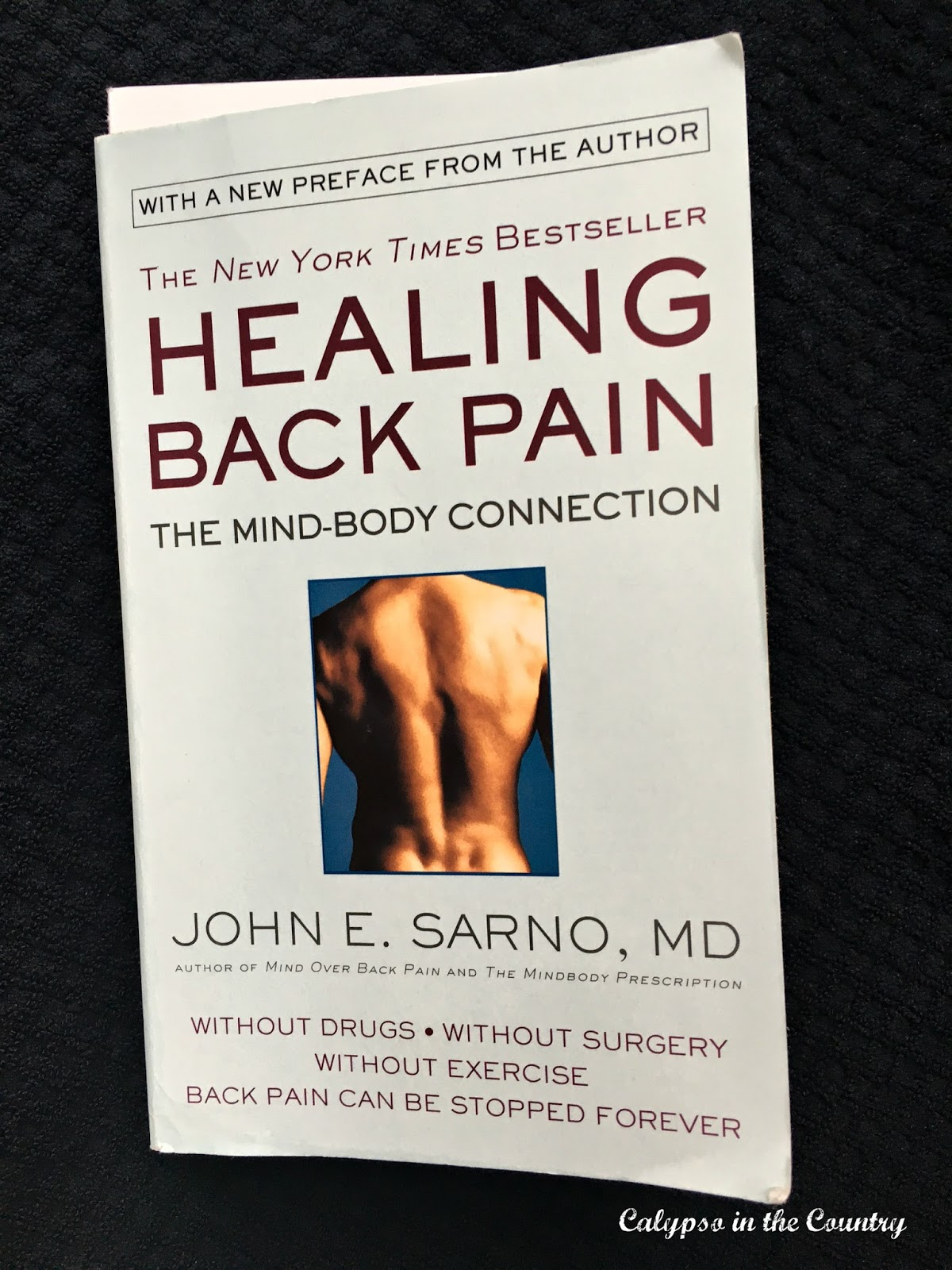 Healing Back Pain by John Sarno - the guy Howard Stern recommends