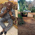 OMG... Dino Melaye shares photos of world class bridge he built in his constituency and Nigerians are going in hard