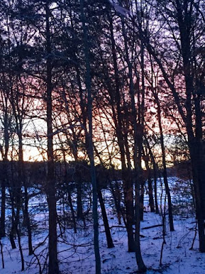 Winter sunrise through the trees