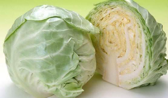 6顆高麗菜的圖片搜尋結果