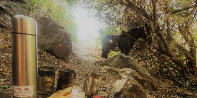 Campamento y caballo en montaña de Salamanca