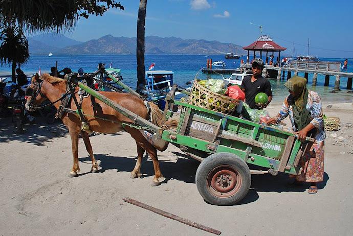 Gente cargando un carro