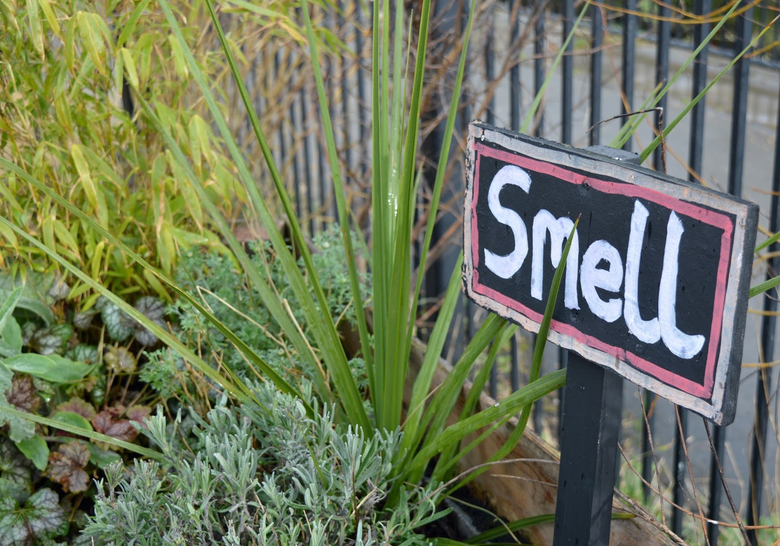 Ouseburn Farm Newcastle | A FREE Place to Take the Kids - sensory garden smell
