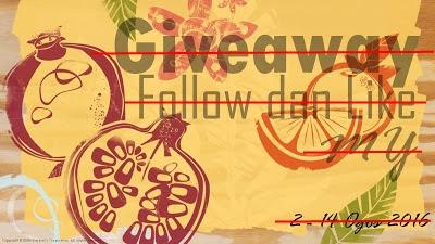 Pemenang Giveaway Follow dan Like MY