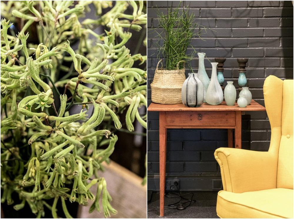 sisustus, sisustaminen, sisustusliike, Espoo, Loft, natural, Visualaddict, inredning, interior, vihersisustaminen, Garden Living, viherkasvi, kukkakauppa, puutarhasuunnittelu, kukat, kasvit, ruukut