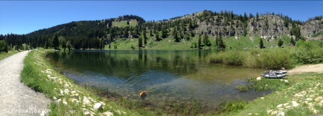 Tony Grove Lake, Utah, Hiking in Utah with Dogs