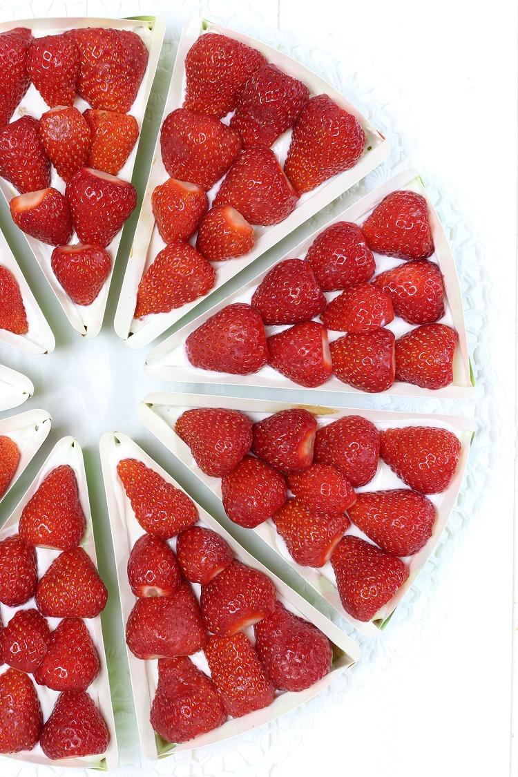 Erdbeer-Quark-Kuchen 2