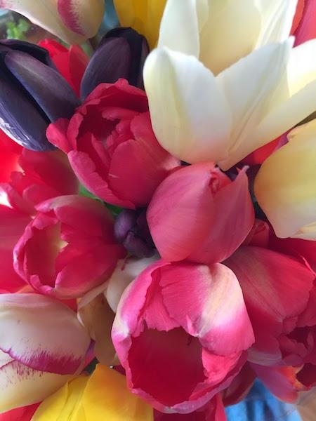 photo gros planc d'un bouquet de tulipe