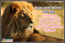 Inspirational Quotes Lion Hero Imgurl