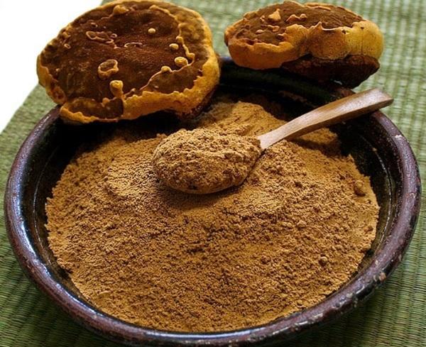 sử dụng nấm linh chi xay nhuyễn