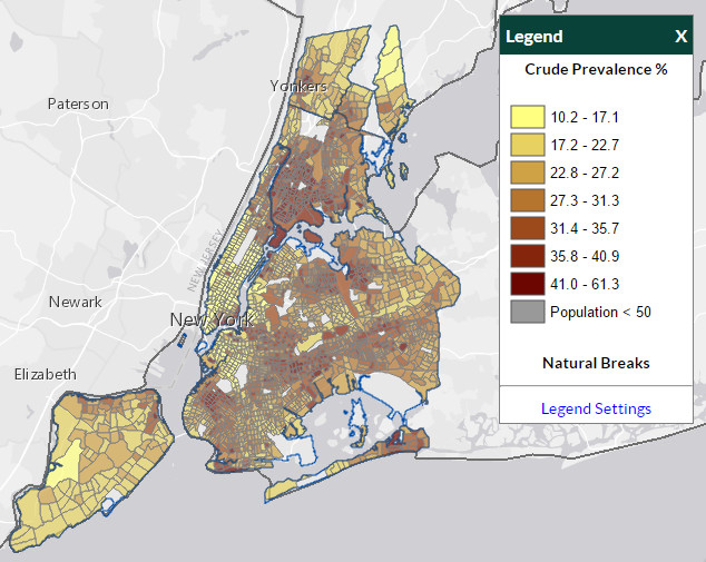 How healthy or unhealthy your neighborhood is vivid maps for Fun activities for adults in nyc