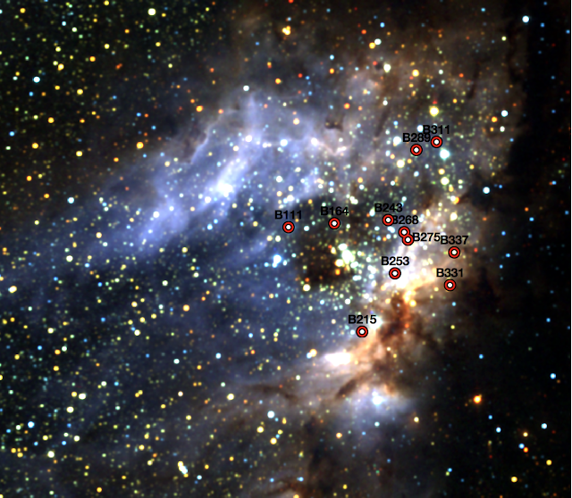 No close partner for young, massive stars in Omega Nebula