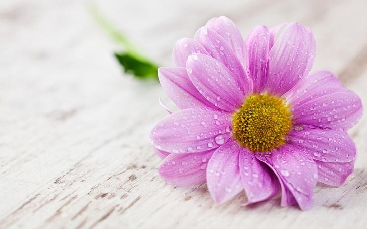 Bersyukur, Membantu Pikiran Lapang dan Hati Lebih Bahagia