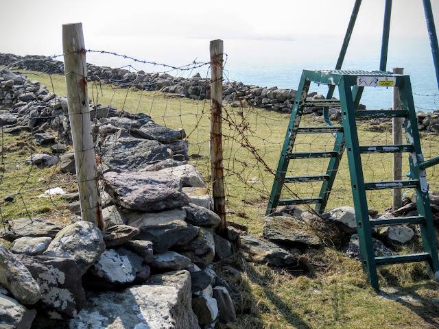 Hiking on the Dingle Peninsula- trail ladder