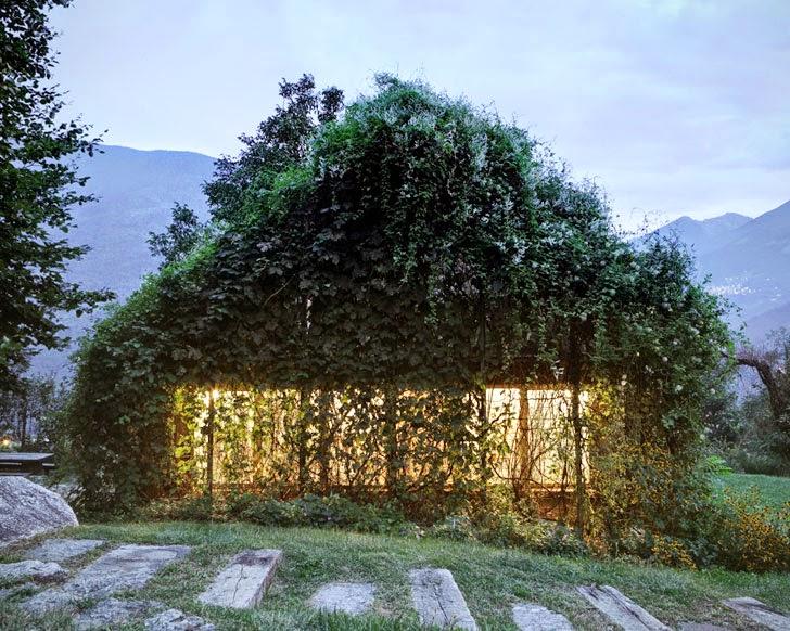 Curiosidades ecológicas-http://2.bp.blogspot.com/-5nIWcUytj5E/VJbCWUhauAI/AAAAAAAAnpM/CMIwvcPPt2g/s1600/Act_Romegialli_estudio_verde_casa_green_box.jpg