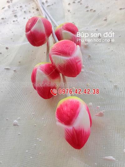 Phu kien hoa pha le tai Dong Nhan