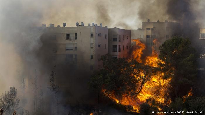 #الحكومة_الإسرائيلية تؤكد أن الحرائق نتيجة عمل #إرهابي.. وسيتم القبض عليهم وعلى كل الفرحين والشامتين عبر مواقع التواصل