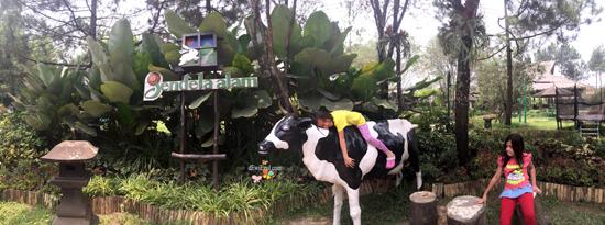 jalan jalan ke jendela alam bandung,wisata memberi makan kambing sapi di bandung,Alamat Jendela alam,Mampirlah ke Jendela Alam, Jika ingin mengenal binatang Ternak lebih dekat,HTM Wahana di Jendela Alam,harga tiket masuk Jendela alam,review jendela alam Bandung, wisata alam di bandung