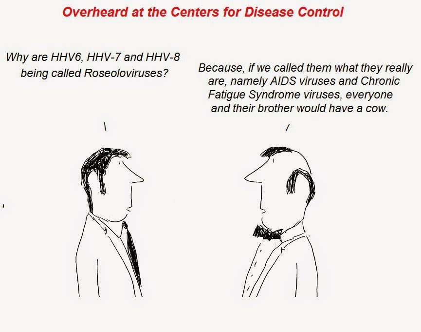 cartoon, cartoons, hhv-6, hhv-6, hhv-8, fraud, roseolovirus, gallo, aids, cfs, chronic fatigue syndrome