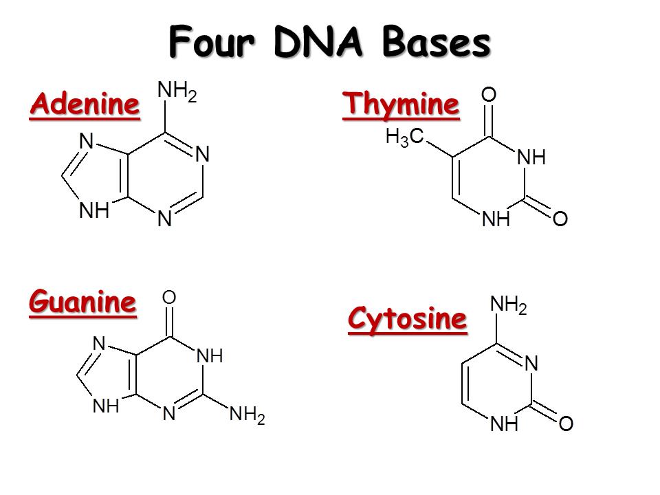 savvy-chemist: GCSE OCR Gateway Organic Chemistry C6.2h