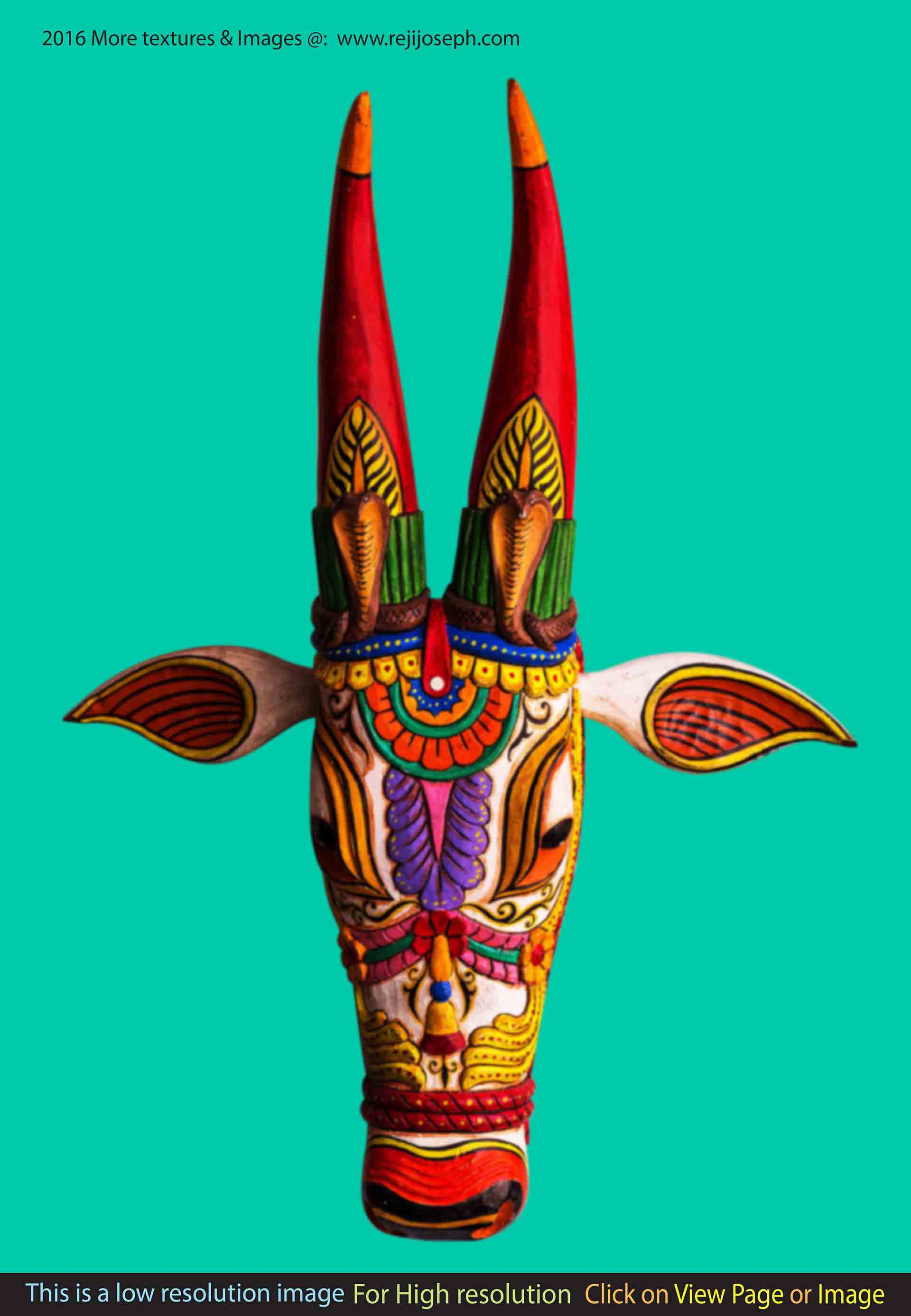 Coloured wooden bullock head 006