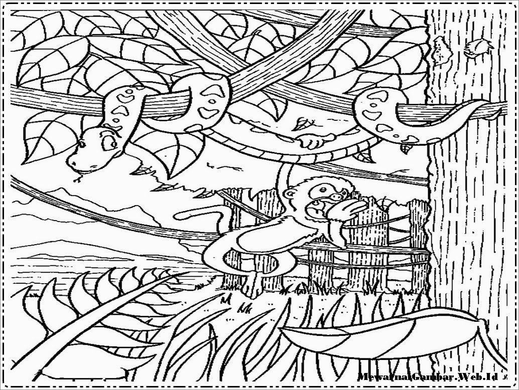 480 Koleksi Gambar Sketsa Hutan Dan Hewan Terbaru