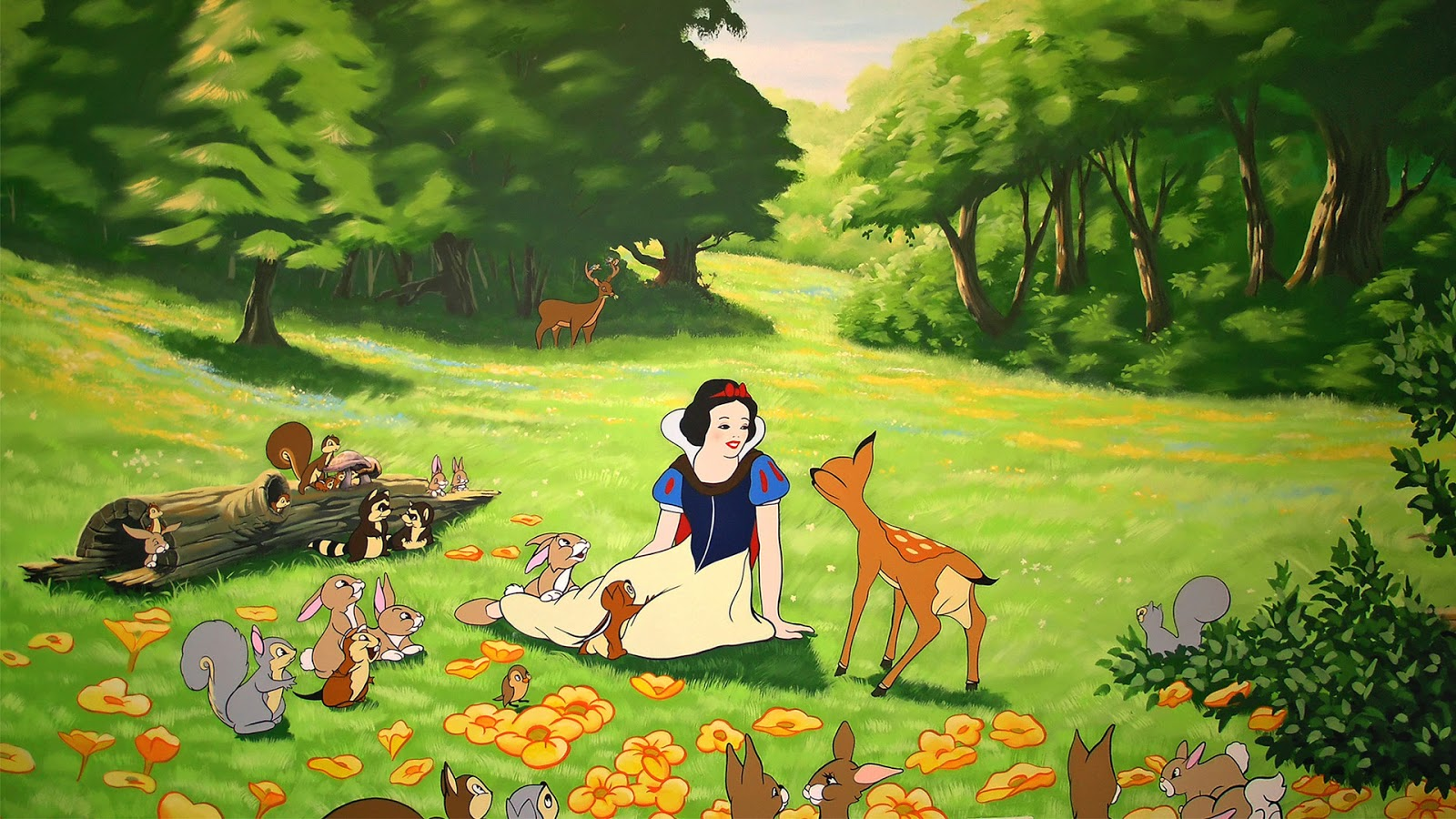 Snow White Hd Wallpapers High Definition Free Background