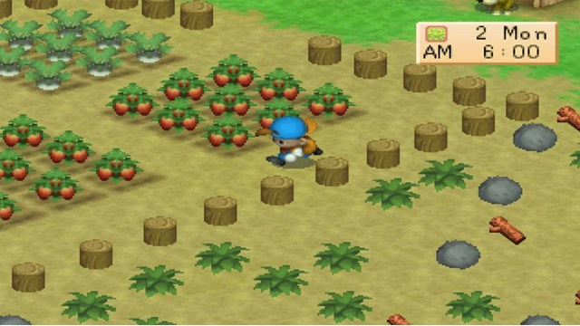 Download Harvest Moon PC Games Gameplay