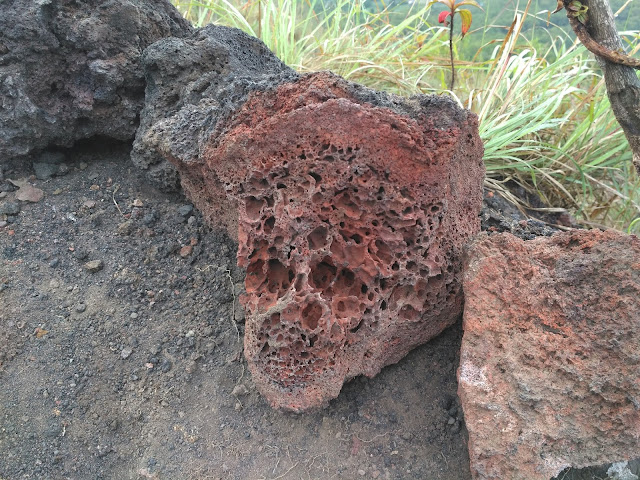 Felsic Igneous rock