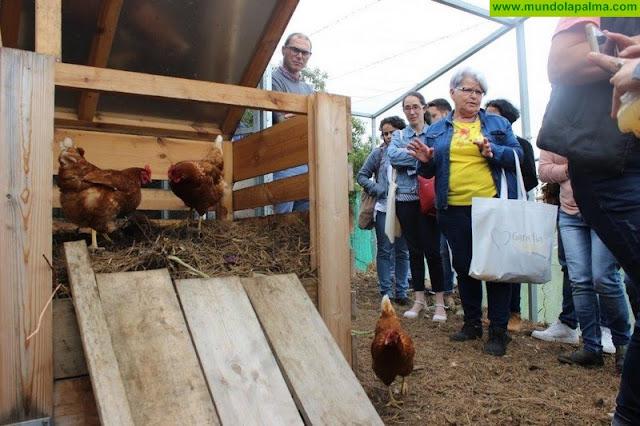 El Ayuntamiento de Villa de Mazo inicia un nuevo curso de formación agroecológica