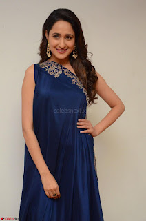 Pragya Jaiswal in beautiful Blue Gown Spicy Latest Pics February 2017 063.JPG