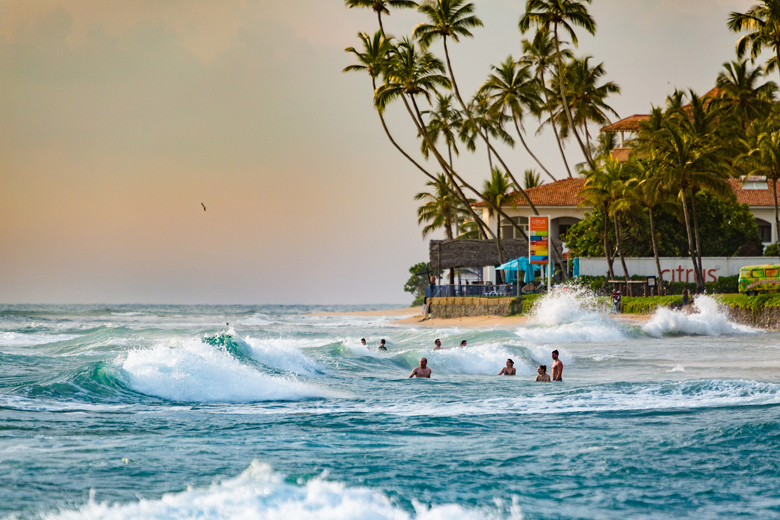 olas playa