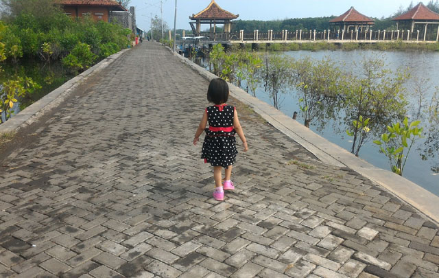 Taman Mangrove