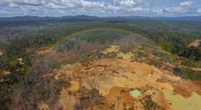 Minería en Venezuela, un submundo sin escasez y con millones en efectivo