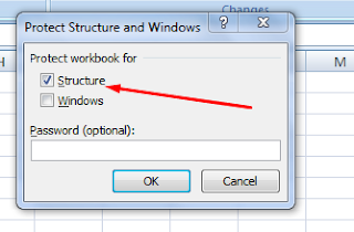 cara Protect Workbook structure