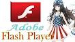 Adobe Flash Player 32.0.0.171 Final Install Offline