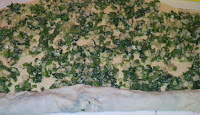 2016 04 25%2B15.45.16 - Placinta cu cartofi, telemea si spanac
