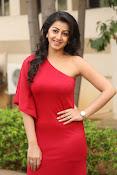 Nikki galarani latest sizzling pics-thumbnail-5