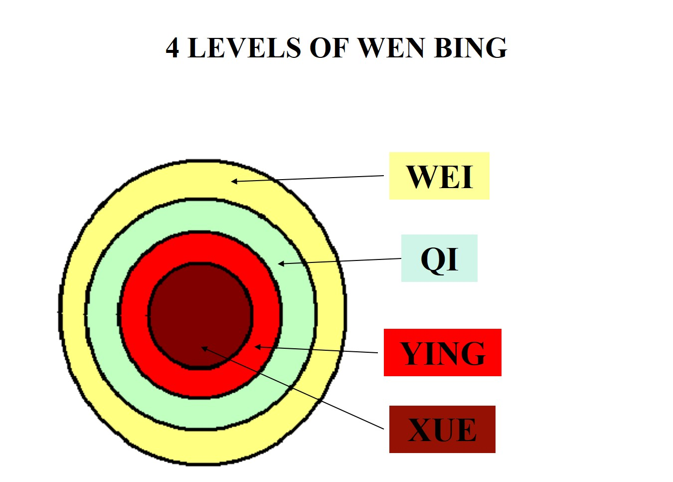 hight resolution of the wei level of the 4 levels broadly corresponds to the tai yang stage of the 6 stages the former deals with wind heat and the latter with wind cold