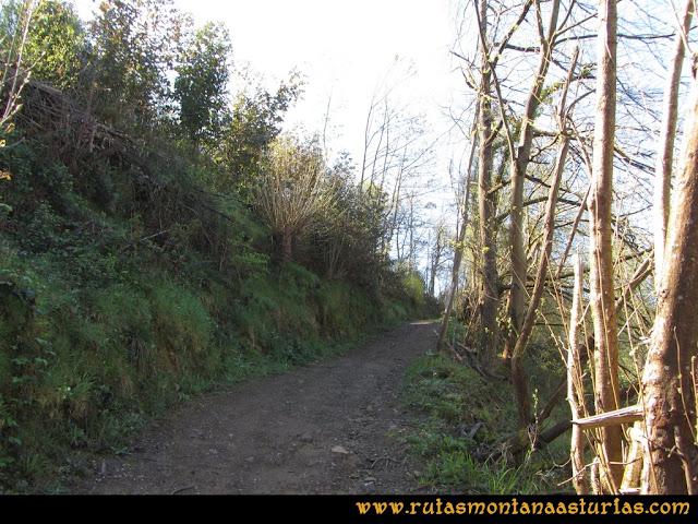 Camino Encantado Llanes: Subiendo a Comezán