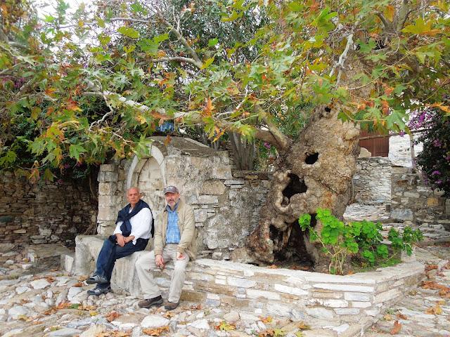 Köyün küçük meydanlarından birinde; yaşlı çınar, çeşme ve gezginler