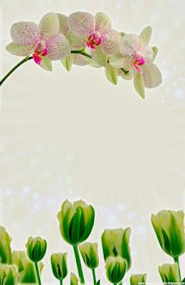 Invitación Elegante y Novedosa para Bodas Tulipanes y Orquídea