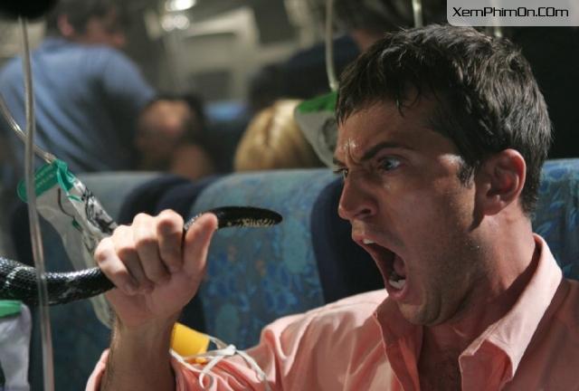 Rắn Độc Trên Không, Snakes On A Plane