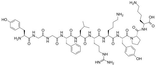 Setiap Manusia Butuh Hormon Endorphin? Apa Sih Itu?